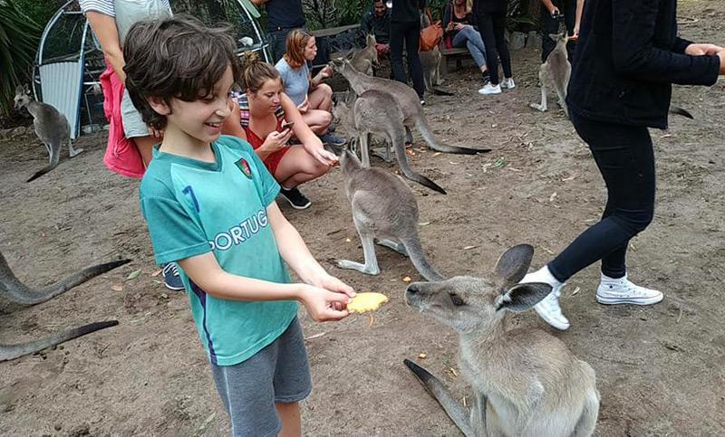 הילדים התאהבו באוסטרליה בזכות בעלי החיים וניהנו בטירוף מכל עולם החי