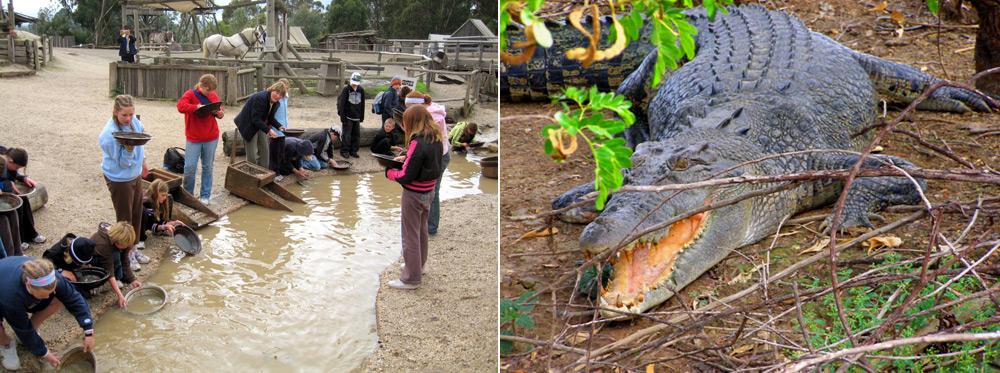 פעילויות לילדים באוסטרליה